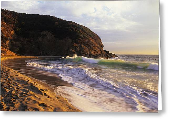 Danae Greeting Cards - Winter Swells Strands Beach Greeting Card by Cliff Wassmann