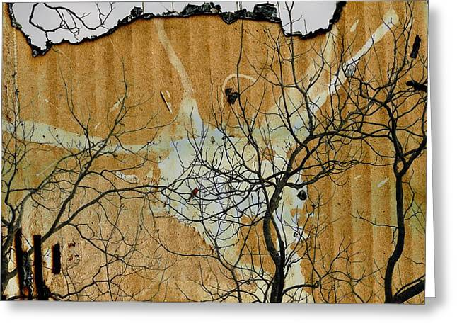 Cardboard Greeting Cards - Winter Tangle Greeting Card by Jan Amiss Photography