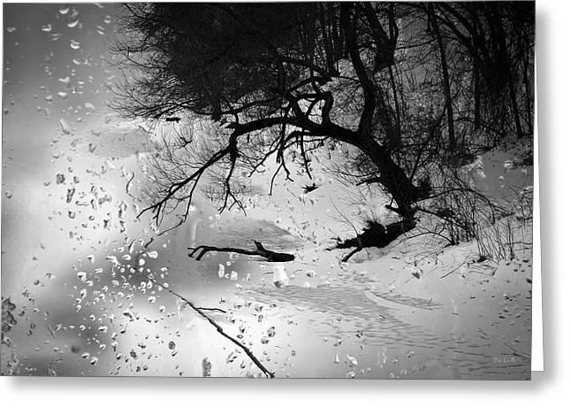 Decorative Art Greeting Cards - Winter Through My Window Greeting Card by Bob Orsillo