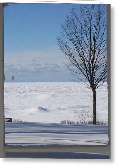 Screen Doors Greeting Cards - Winter Through The Screen Door - 2 Greeting Card by Victoria Feazell