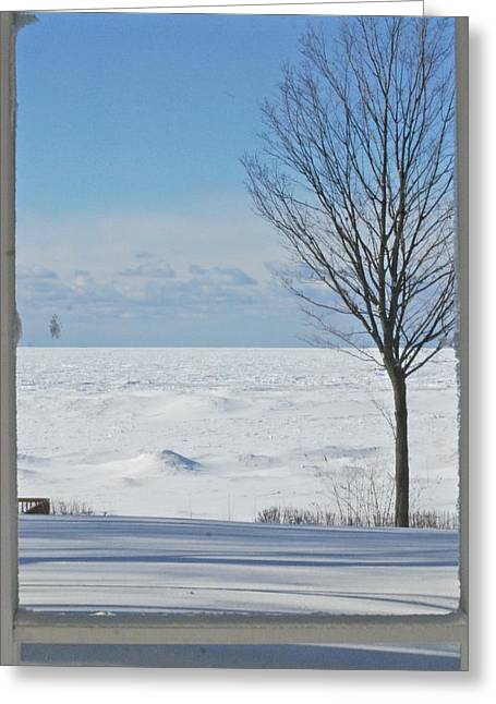 Screen Doors Greeting Cards - Winter Through The Screen Door Greeting Card by Victoria Feazell