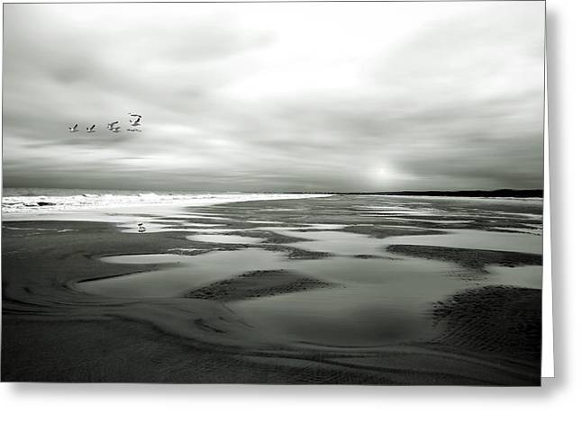 Beach Greeting Cards - Winter Tide in BW Greeting Card by Joe Quinn