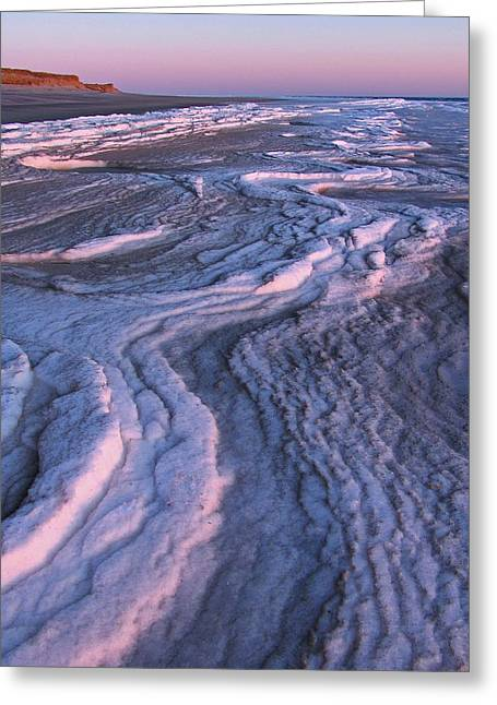 Winter Tide On Plum Island Greeting Card by Juergen Roth