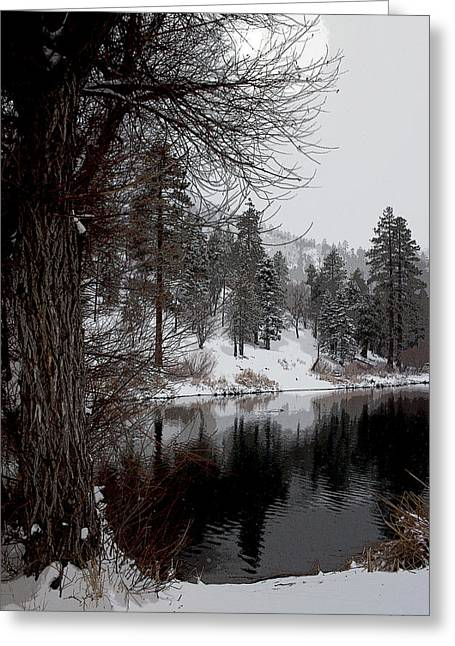 Reflection In Water Greeting Cards - Winter Time Greeting Card by Ivete Basso