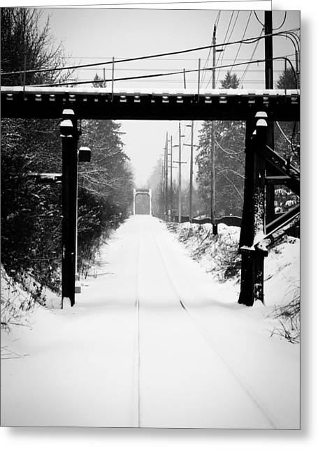 Snowy Day Greeting Cards - Winter Tracks Greeting Card by Aaron Berg
