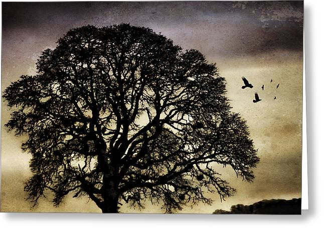 Bare Oak Tree Greeting Cards - Winter Tree and Ravens Greeting Card by Carol Leigh