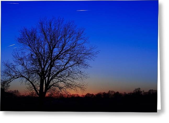 Southern Indiana Greeting Cards - Winter Tree Greeting Card by Andrea Kappler