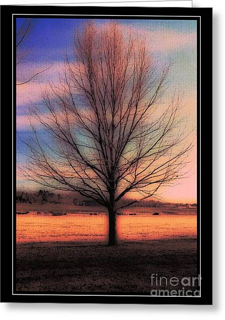 Struckle Greeting Cards - Winter Tree Greeting Card by Kathleen Struckle