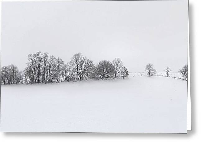 Winter Tree Line in Indiana Greeting Card by Julie Dant