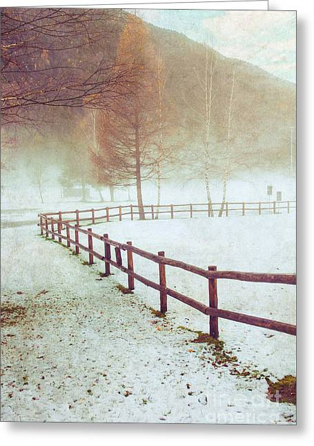 Wintry Photographs Greeting Cards - Winter tree with fence Greeting Card by Silvia Ganora
