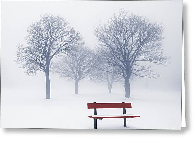 Snow Scene Landscape Greeting Cards - Winter trees and bench in fog Greeting Card by Elena Elisseeva
