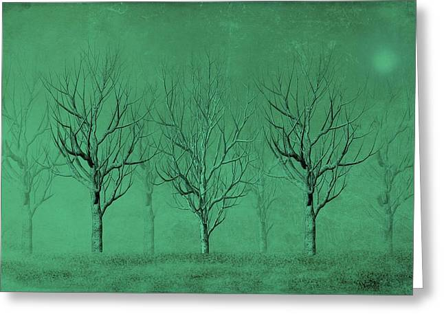 Ink Drawing Greeting Cards - Winter Trees in the Mist Greeting Card by David Dehner