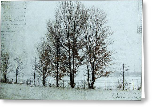 Kim Klassen Texture Greeting Cards - Winter Trees Greeting Card by Lesley Jane Smithers