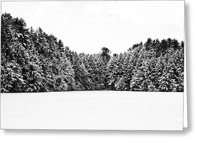 Lebanon Greeting Cards - Winter Trees Mink Brook Hanover NH Greeting Card by Edward Fielding
