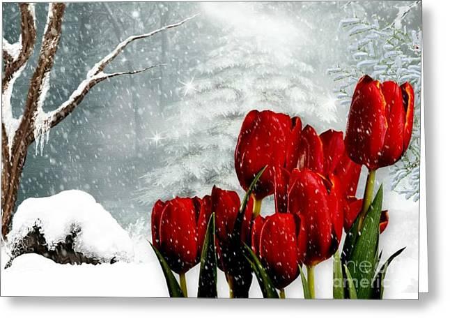 Morag Bates Greeting Cards - Winter Tulips Greeting Card by Morag Bates