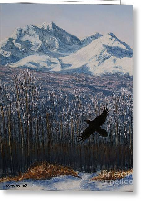 Canada Pastels Greeting Cards - Winter Valley Raven Greeting Card by Stanza Widen