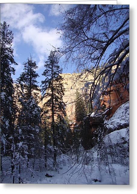 West Fork Greeting Cards - Winter Vally  Greeting Card by Eun Ree