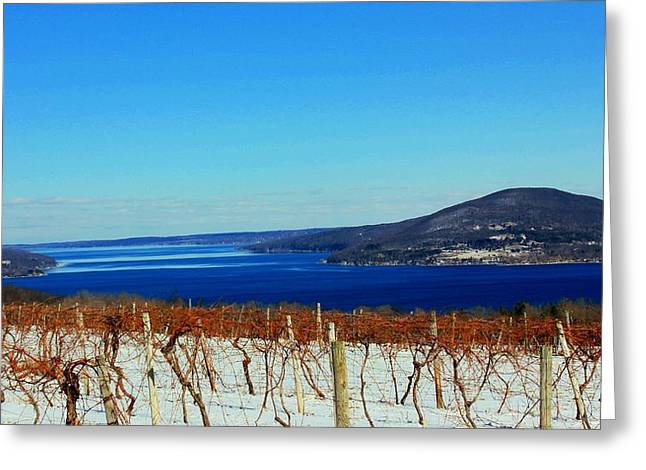 Canandaigua Lake Greeting Cards - Winter View Greeting Card by Glenn Curtis