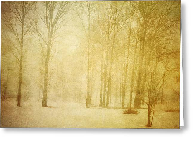Mystical Landscape Greeting Cards - Winter Greeting Card by Violet Gray