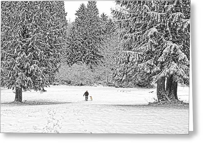 Winter Time Greeting Cards - Winter Walk in the Snow  Greeting Card by Jennie Marie Schell