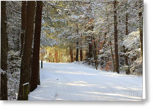 Union Connecticut Greeting Cards - Winter Walking Greeting Card by Neal  Eslinger