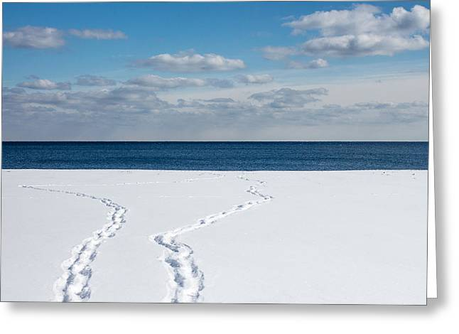 End Of The Strip Greeting Cards - Winter Walks Greeting Card by Kyra Savolainen