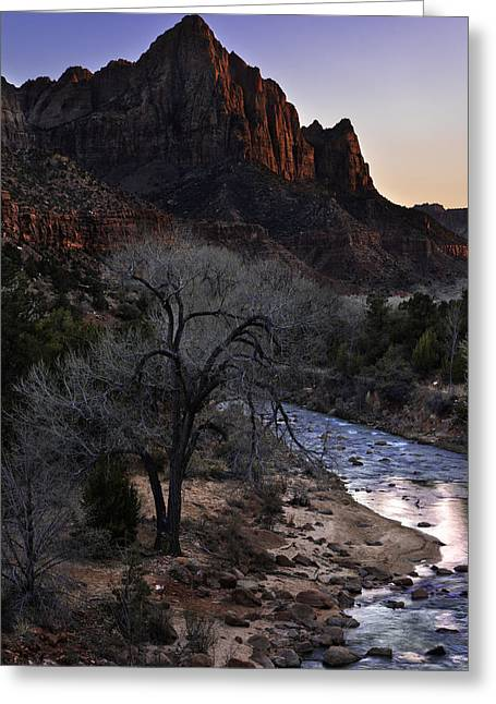Nikon Greeting Cards - Winter Watchman Greeting Card by Chad Dutson