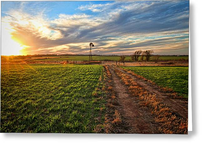 Winter Wheat Greeting Cards - Winter Wheat Sunset Greeting Card by Chris Harris