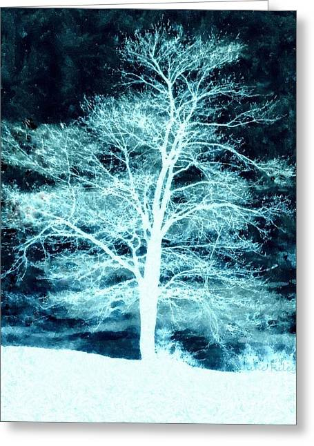 Snowy Night Greeting Cards - Winter Whispers through the Night Greeting Card by Janine Riley