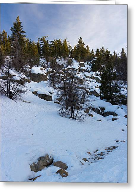Snowy Day Greeting Cards - Winter White Greeting Card by Heidi Smith