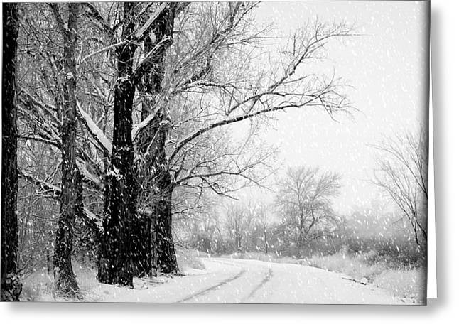Wintry Photographs Greeting Cards - Winter White Seasons Greetings Greeting Card by Carol Groenen
