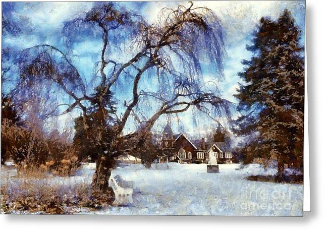 Winter Park Greeting Cards - Winter Willow in Mountainhome - Church Greeting Card by Janine Riley