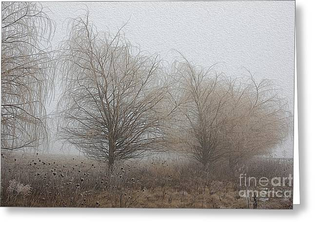 Weeping Greeting Cards - Winter Willows Greeting Card by David Bearden
