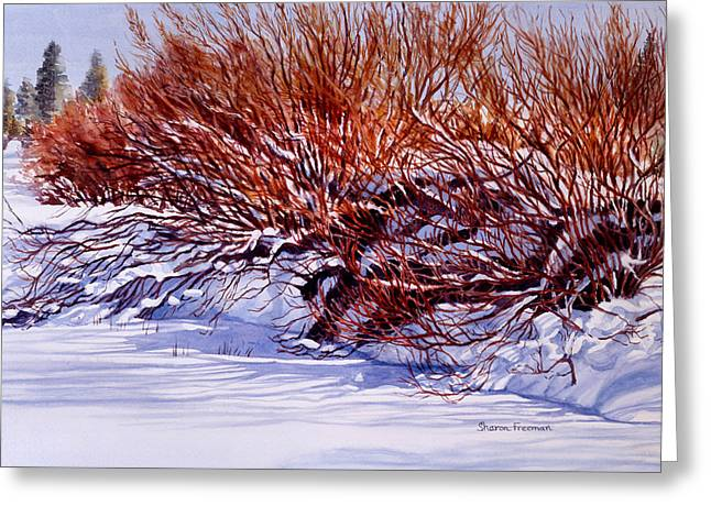 Sunriver Greeting Cards - Winter Willows Greeting Card by Sharon Freeman