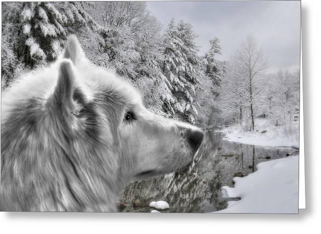 Beautiful Scenery Digital Art Greeting Cards - Winter Wolf Greeting Card by Lori Deiter