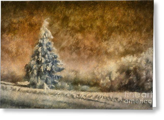Fir Trees Greeting Cards - Winter Wonder Greeting Card by Lois Bryan
