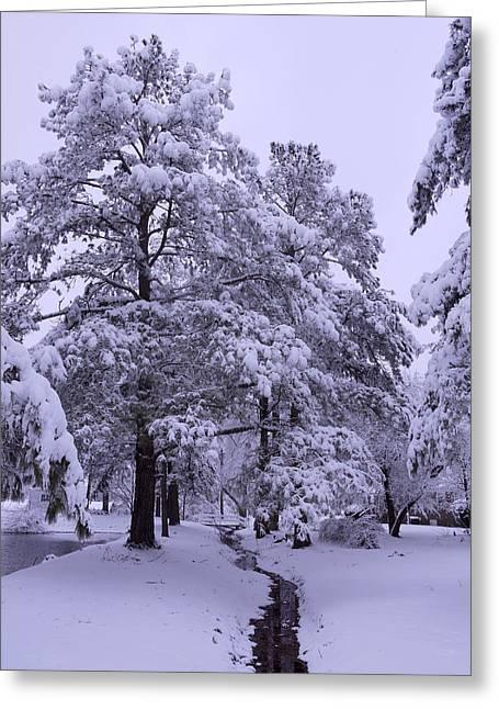 Stream Digital Greeting Cards - Winter Wonderland 3 Greeting Card by Mike McGlothlen