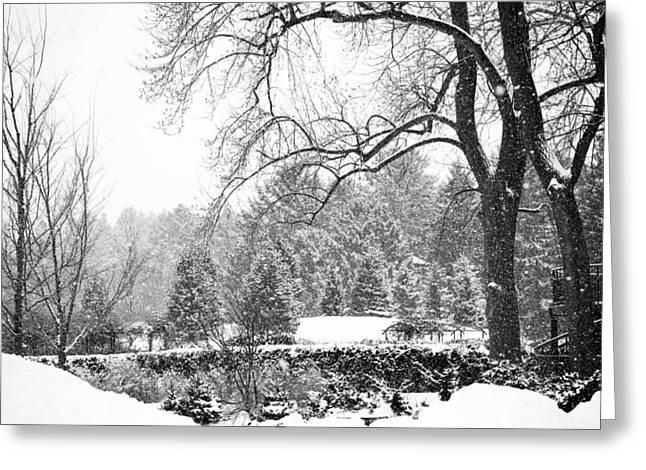 Allan Millora Greeting Cards - Winter Wonderland Greeting Card by Allan Millora Photography