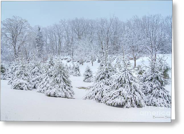 West Virginia Snow Scene Greeting Cards - Winter Wonderland Greeting Card by Benanne Stiens