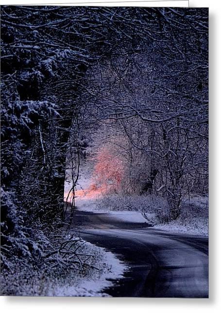 Winter Night Greeting Cards - Winter Wonderland Greeting Card by Deena Stoddard