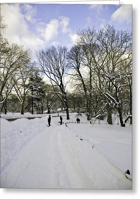 Snowy Day Greeting Cards - Winter Wonderland In Central Park - New York Greeting Card by Madeline Ellis