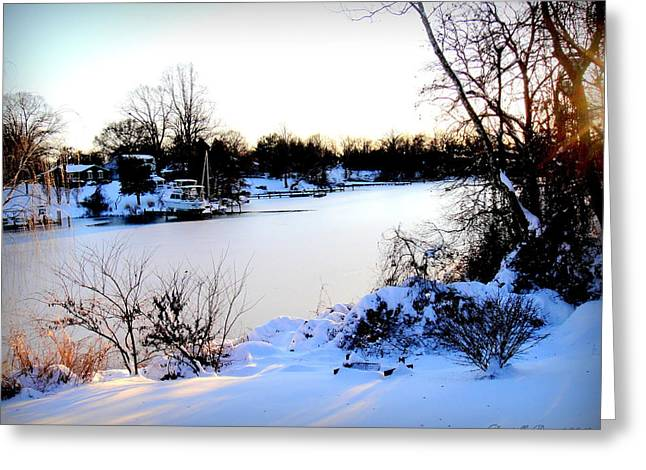 Snow-covered Landscape Digital Art Greeting Cards - Winter Wonderland  In Maryland USA Greeting Card by Danielle  Parent