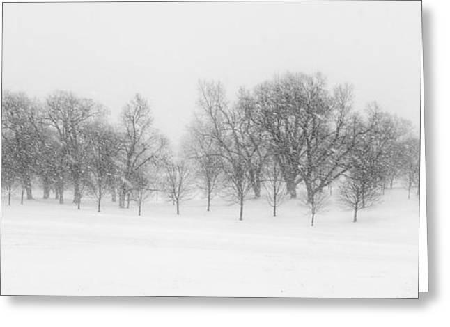 Loose Greeting Cards - Winter Wonderland Greeting Card by Lisa Plymell