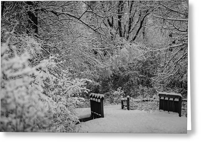 Winter Wonderland Greeting Card by Sebastian Musial
