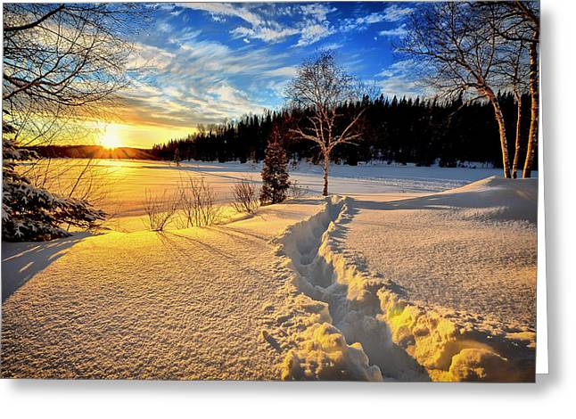 Snowy Evening Greeting Cards - Winter Wonderland Sunset Greeting Card by Mountain Dreams