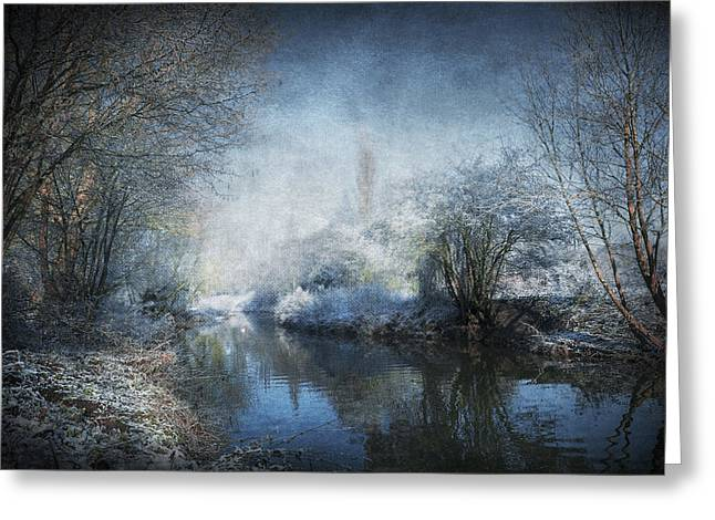 Water Garden Digital Art Greeting Cards - Winter Wonderland Greeting Card by Svetlana Sewell