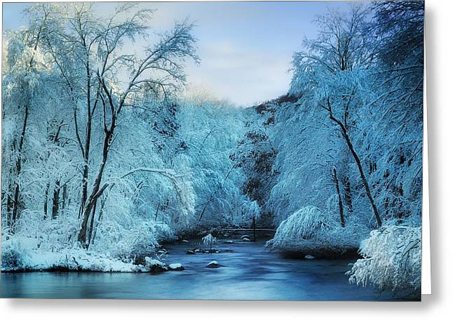 Reflections In River Greeting Cards - Winter Wonderland Greeting Card by Thomas Schoeller