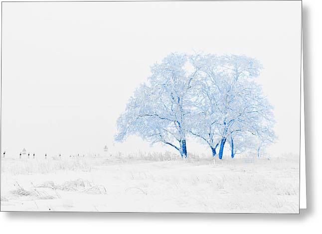Winter Wonderland Greeting Card by Vel Verrept