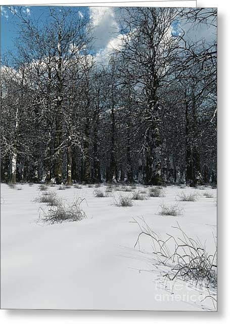 Winter Road Scenes Digital Greeting Cards - Winter Woodland Greeting Card by Fairy Fantasies
