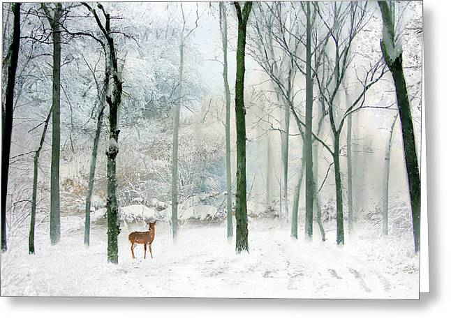 Winter Landscape Digital Greeting Cards - Winter Woodland Greeting Card by Jessica Jenney